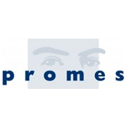 PROMES INTERIM Management